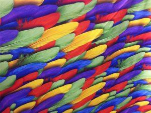 Solução de impressão têxtil doméstica completa