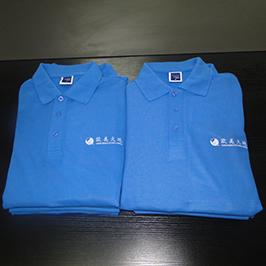 Pólo personalizado amostra de impressão por A3 impressora de t-shirt WER-E2000T